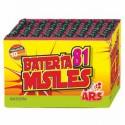 Batería Pequeña Misiles 81 disparos