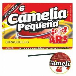 Girasuelos Camelia Pequeña 6