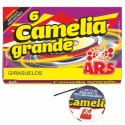 Girasuelos Camelia Grande 6